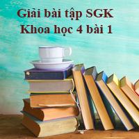 Giải bài tập SGK Khoa học 4 bài 1: Con người cần gì để sống?