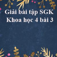 Giải bài tập SGK Khoa học 4 bài 3: Trao đổi chất ở người (tiếp theo)