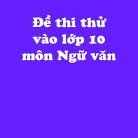 Đề thi thử vào lớp 10 môn Ngữ văn Sở GD&ĐT tỉnh Ninh Bình năm học 2017 - 2018