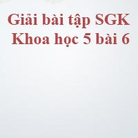 Giải bài tập SGK Khoa học 5 bài 6: Từ lúc mới sinh đến tuổi dậy thì