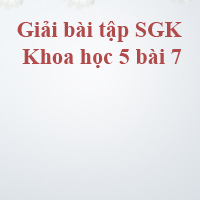 Giải bài tập SGK Khoa học 5 bài 7: Từ tuổi vị thành niên đến tuổi già
