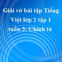 Giải vở bài tập Tiếng Việt lớp 2 tập 1 tuần 3: Chính tả