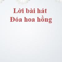 Lời bài hát: Đóa hoa hồng - Chi Pu