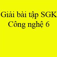 Giải bài tập SGK Công nghệ lớp 6 bài 23: Thực hành xây dựng thực đơn