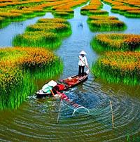 Những bài thơ hay về đất nước Việt Nam