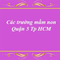 Các trường mầm non quận 5 thành phố Hồ Chí Minh