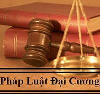 Câu hỏi trắc nghiệm Pháp luật đại cương có đáp án
