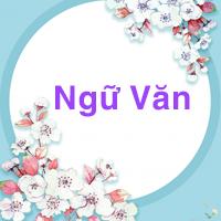 Đề thi học kì 1 lớp 3 môn Tiếng Việt năm 2020-2021 - Đề 1