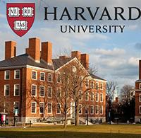 Tham gia khóa học trực tuyến của đại học Havard miễn phí