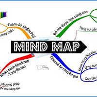 Top các phần mềm vẽ sơ đồ tư duy miễn phí
