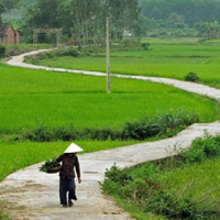Đề thi giữa kì 1 lớp 1 môn Tiếng Việt năm 2020 sách Cánh Diều - Đề 4