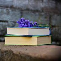 Giải vở bài tập Ngữ văn 9 bài 16: Ôn tập làm văn (tiếp theo)