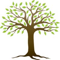 Giáo án môn Thủ công 3 bài 6: Ôn tập phối hợp gấp, cắt, dán hình
