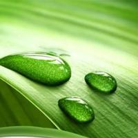 Giải SGK Tự nhiên và xã hội 1 bài 7: Thực hành: Đánh răng và rửa mặt